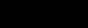 bruiser conversions logo